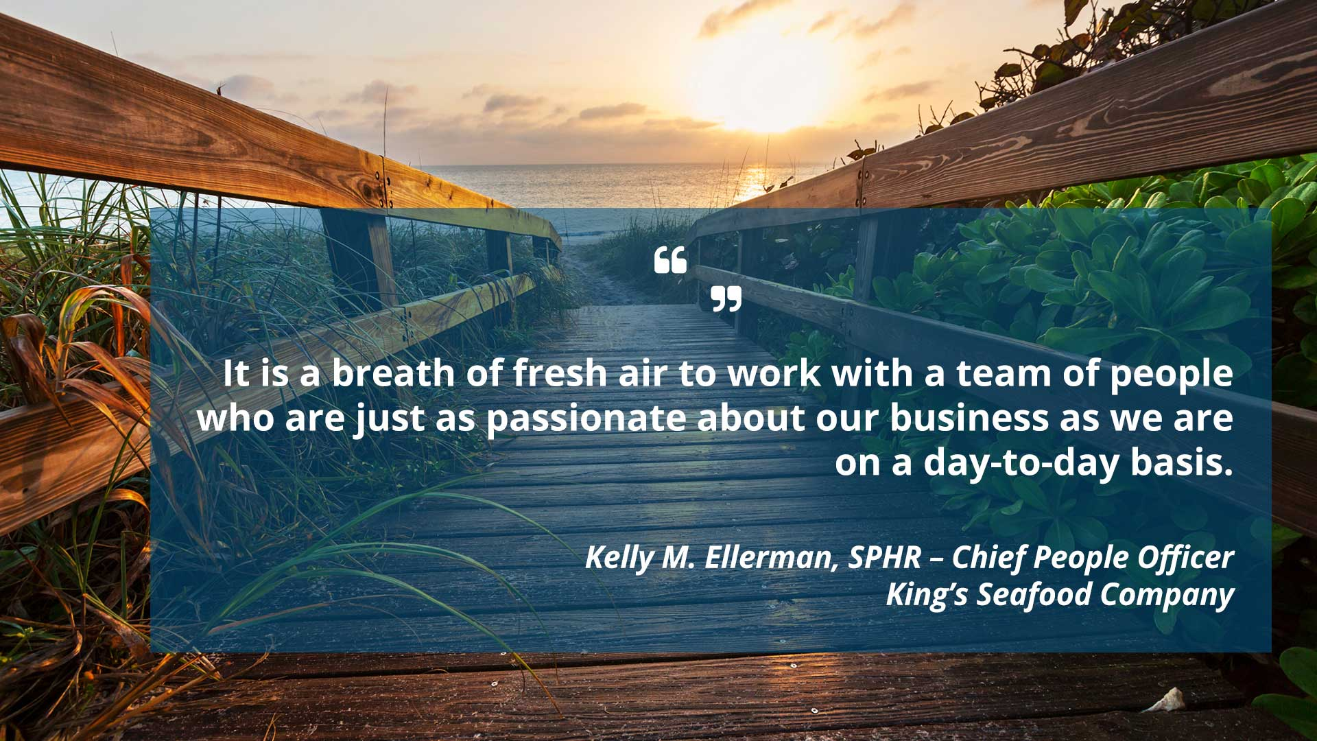 It is a breath of fresh air to work with a team of people who are just as passionate about our business as we are on a day-to-day basis. 